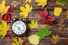 Leafs and alarm clock Royalty Free Stock Photo