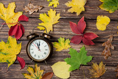 Leafs and alarm clock Royalty Free Stock Photography