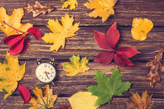 Leafs and alarm clock Stock Photography