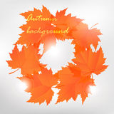 Leafs background. Autumn leafs background. Vector fall design Royalty Free Stock Photo