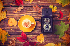 Leafs, camera and coffee cup Royalty Free Stock Photos
