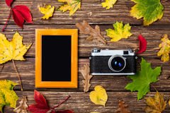 Leafs, camera and frame Royalty Free Stock Photo
