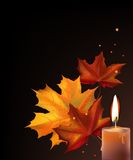 Leafs and candle Royalty Free Stock Photos
