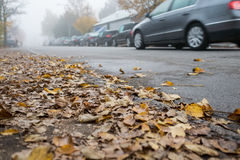 Leafs and cars on a road Royalty Free Stock Images