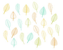 Leafs decor Royalty Free Stock Images