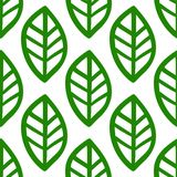 Green hand drawn leafs pattern on white background. Leafs hand painted seamless pattern on white background made in vektor Royalty Free Stock Images