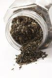 leafs herbaty. Zdjęcia Stock