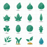 Leafs icons Stock Photography