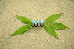 leafs płuczka zdjęcie stock