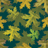 Leafs pattern. For using in different spheres Royalty Free Stock Photos