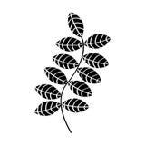Leafs plant decorative icon Stock Photo
