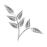 Leafs plant decorative icon Royalty Free Stock Images