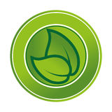 Leafs plant ecology icon Stock Image