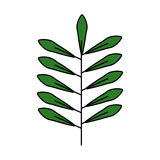 Leafs plant isolated icon Stock Images