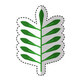 Leafs plant isolated icon Stock Photography