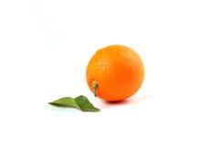 leafs pomarańcze Obraz Stock