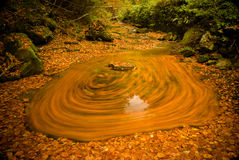 Leafs on the river. Current format because water leaves rotate around a boulder Stock Images
