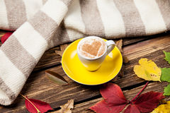 Leafs, scarf and coffee cup Royalty Free Stock Photo