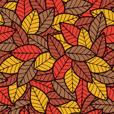 Leafs Seamless Pattern Autumn Stock Images