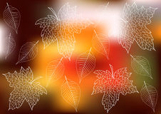 Leafs silhouettes on bokeh background Stock Photo