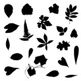 Leafs vector set silhouette on white background Stock Image