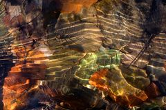 Leafs in water in autumn. Coloured leafs underwater in autumn, abstract light shining on the leafs Royalty Free Stock Photos