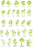 leafs wektora Obraz Royalty Free