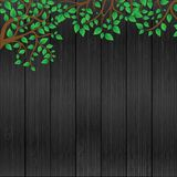 Leafs on the wood background Royalty Free Stock Photo