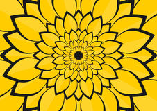 Yellow flower leafs illustration. Leafs of a yellow sunflower Royalty Free Stock Photography