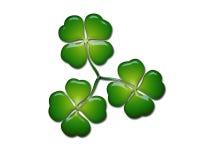 leafshamrock för växter av släkten Trifolium fyra stock illustrationer