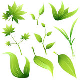 leafvektor Royaltyfri Bild