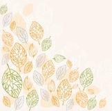 Leafy background Stock Image