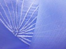 Leafy blue thread work Royalty Free Stock Photo
