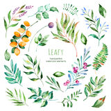 Leafy collection.22 Handpainted watercolor floral elements. stock illustration