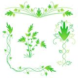 Leafy flourishes Royalty Free Stock Photos