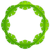 A leafy frame Stock Images