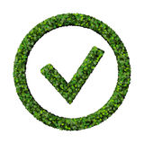 Leafy green check mark Stock Photo
