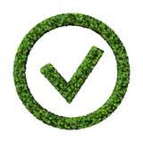 Leafy green check mark Stock Photo