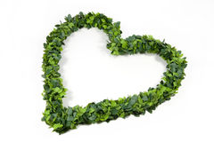 Leafy green love heart Royalty Free Stock Images