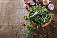 Leafy green mix over rustic wooden background Stock Photos