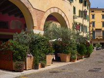 Leafy green potted plants around a restaurant in Verona, Italy Stock Photo