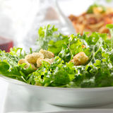 Leafy green salad with croutons Royalty Free Stock Photos