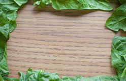 Leafy Green Spinach Border Royalty Free Stock Images