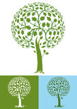 Leafy green tree Royalty Free Stock Images