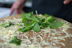 Leafy Greens on Cheese Crepe Stock Photography