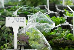 Leafy Greens at an Outdoor Market. Variety of leafy greens in plastic bags at an outdoor farmers market stock images