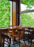 Leafy organic cafe royalty free stock photos