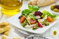 Leafy salad. And mozzarella with pesto and tomatoes stock photography