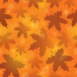 Leafy seamless background 4 Royalty Free Stock Image