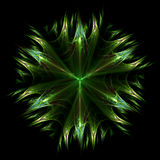 Leafy star Royalty Free Stock Photography